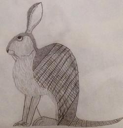File:Armadillo Hare B&W Sketch.png