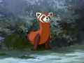 Pabu about to comfort Korra.png