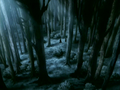 Dark forest.png