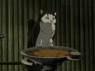 File:Cat owl.png