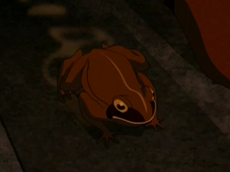 Archivo:Wood frog.png