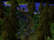 Daily Peon Terrain Picture 3