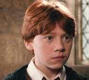 Rupert Grint as Ron Weasley (COS)