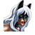 Black Cat Icon 2
