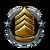 Agent Rank Icon 7