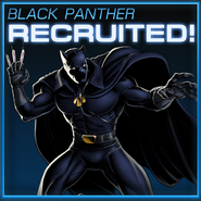 Black Panther Recruited