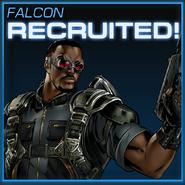 Falcon Recruited