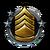 Agent Rank Icon 8