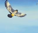 El vuelo del halcon