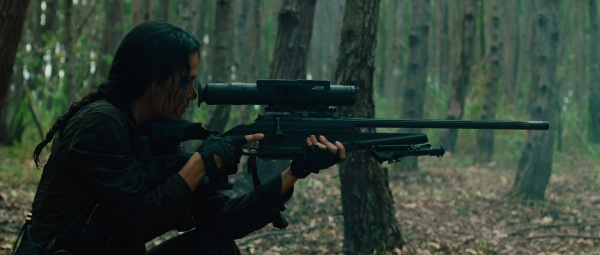 File:Aiming r93 in the woods.jpg