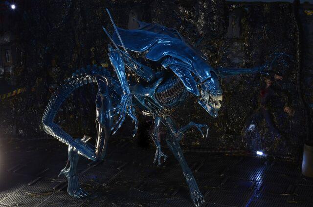 File:NECA-Alien-Queen-009.jpg