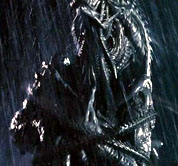 File:Predator whip.jpg