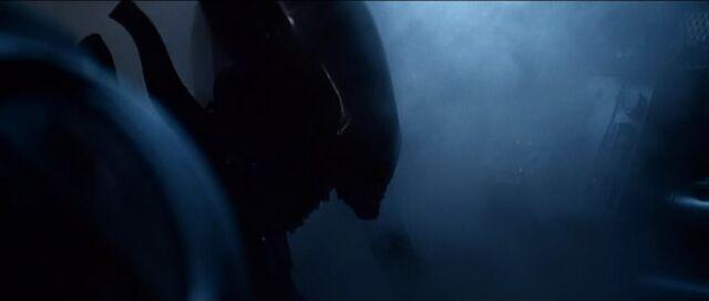 File:Alien Rising-A1.jpg