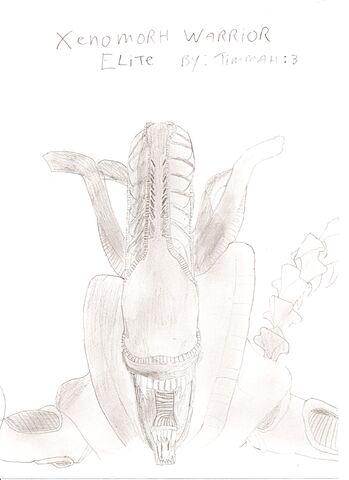File:Xenomorph Drawing.jpg