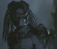 File:Depredador (10).jpg