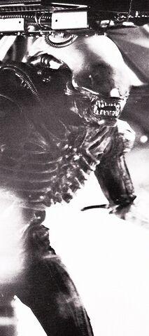 File:Badejo in full costume as Alien.jpg