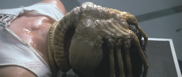 ファイル:Alien-The Facehugger.png