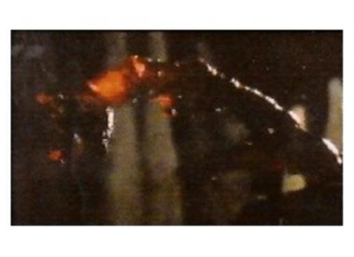File:Alien 2 alien.jpg