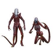 NECA-Aliens-2-Pack-7--pTRU1-24654921dt