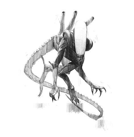 File:Alien Sketch.0.jpg