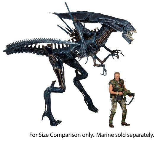 File:NECA-Alien-Xenomorph-Queen-3.jpg