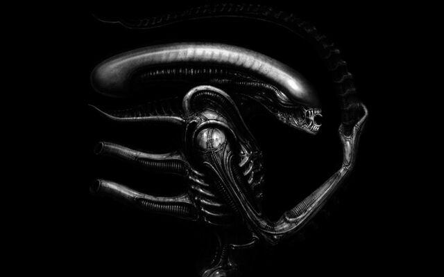 File:Xenomorph alien desktop 1440x900 hd-wallpaper-931956.jpg