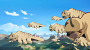 Flying bison in Northen air temple.png
