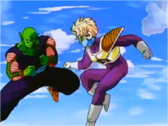 Piccolo Fighting Salza
