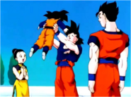 Goku With His Family After Kid Buu's Defeat