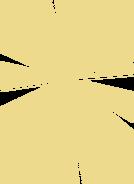 Fusion Ray