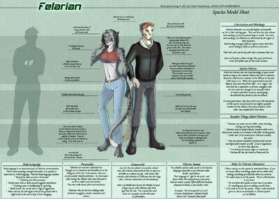 FelarianSpeciesSheet copy