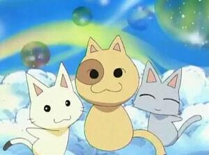 Meowmigos