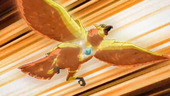 Eagle B-Animal