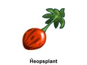 Fruut-Kheopsplant