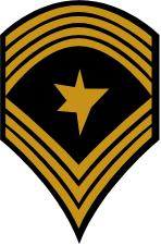 File:EF rank nco-SgtMaj.png
