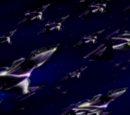 White Star fleet