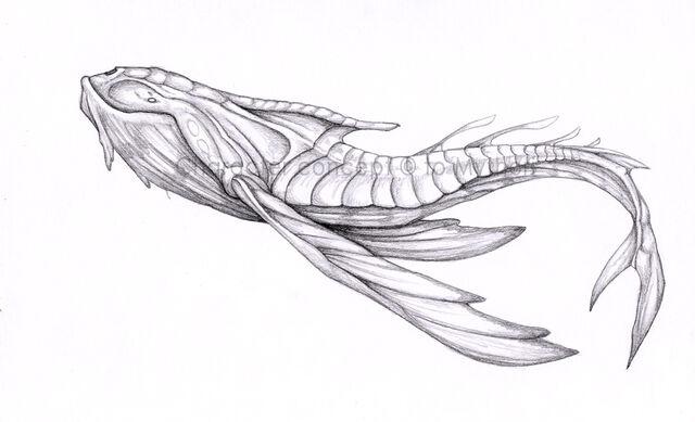 File:Aurelian Whale.jpg