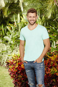 Nick (Bachelor in Paradise 3)