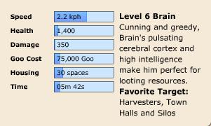 Brain Stats