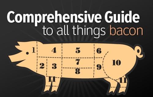 File:Bacon-guide.jpg