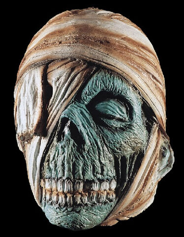 File:Mummy head.jpg