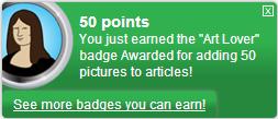 ファイル:Art Lover (earned).png