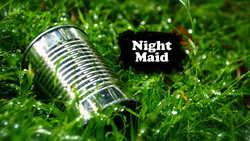 Night Maid
