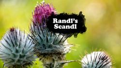 Randl's Scandl