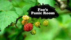 Foo's Panic Room