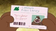 Terrybear (12)
