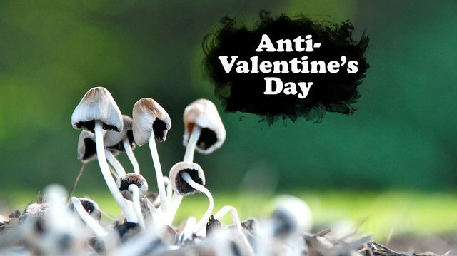 File:Anti-Valentine's Day.PNG