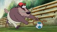 Barkball (15)
