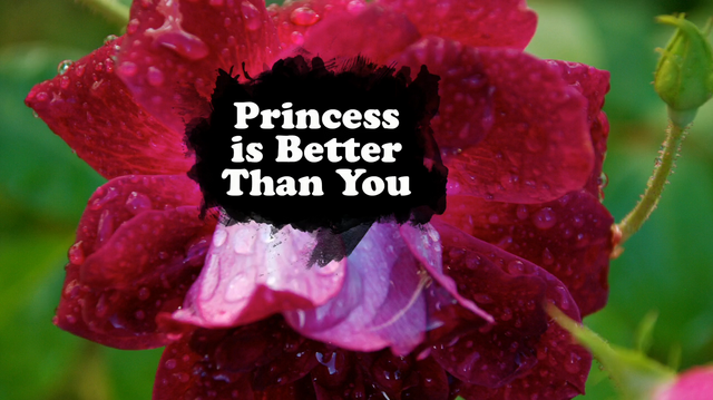 File:Princess is Better Than You.png