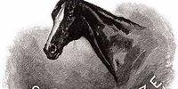 Silver Blaze (horse)
